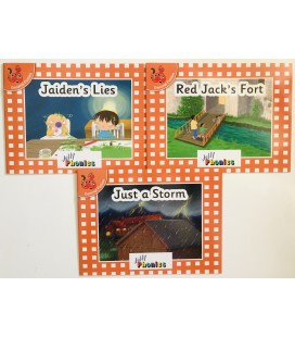 JOLLY PHONICS - ORANGE LEVEL READERS SET 4
