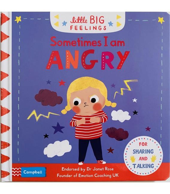 LITTLE BIG FEELINGS - SOMETIMES I AM ANGRY